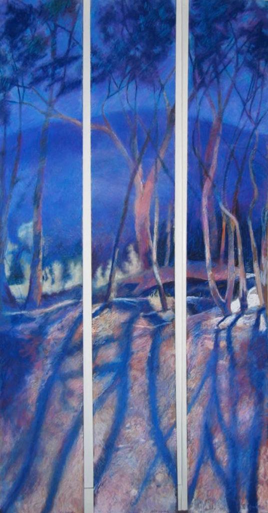 Shadowfall Windlost 3 x individual framed panels Pastel on board Each1850cmx 30cm AU$7500